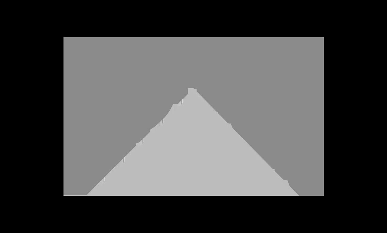 Leroy Marlin